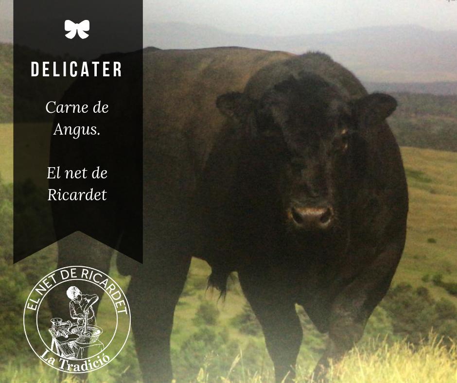 Carne de Angus, vaca rubia gallega madurada, vaca frisona madurada, Tomahawk beef steak, lomo de cerdo ibérico, entre otros